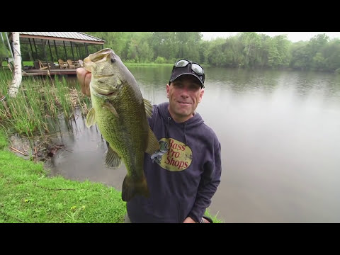 Shore Fishing Livetarget Tilapia Wakebaits For Largemouth   Dave Mercer's Facts Of Fishing The Show