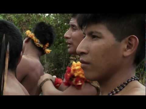 La tribu más amenazada de la Tierra - Colin Firth lanza campaña para salvarlos