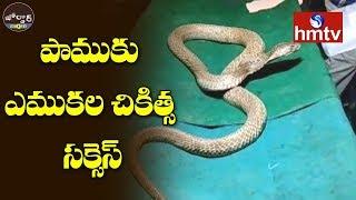 పాముకు ఎముకల చికిత్స సక్సెస్ | Jordar News  | hmtv