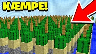 EN KÆMPE KAKTUSFARM!? Dansk Minecraft SpyMc #4