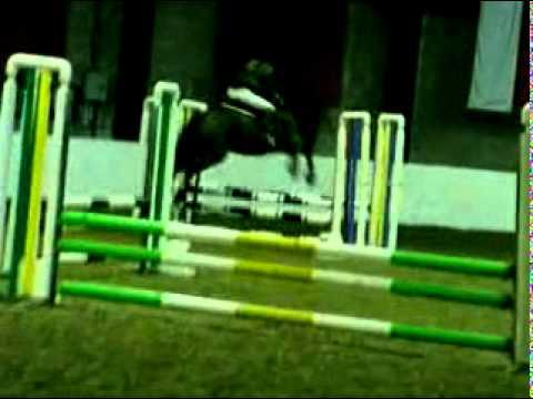 Jumanji jumping at Rowallan :)