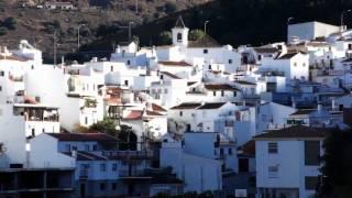 Sayalonga HD: Árboles frutales, viñas y olivos. Provincia  de Málaga y su  Costa del Sol