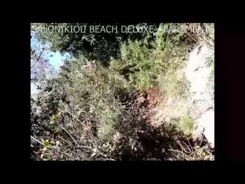 3 ΜΕΡΕΣ ΣΤΟ ΑΓΙΟΝ ΟΡΟΣ - 3 DAYS IN MOUNT ATHOS (videos-photos)
