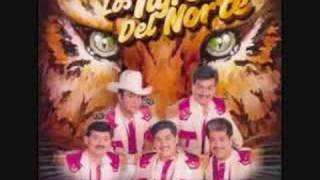 Vídeo 124 de Los Tigres del Norte