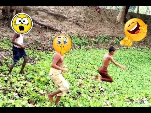 New Funny Videos Top Comedy Video