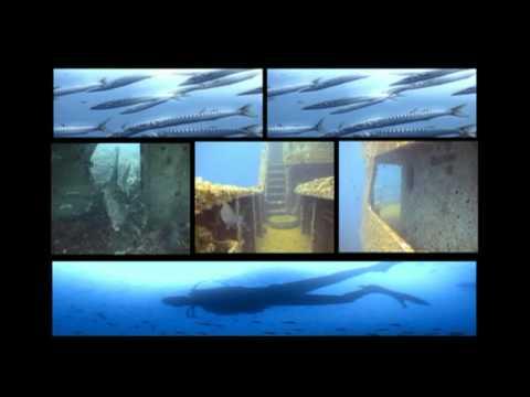 Diving Service - Torre Vado (LE) - Promo Diving