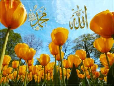 Hor El-fatih  Pogledaj Nas Ja Rabbi video