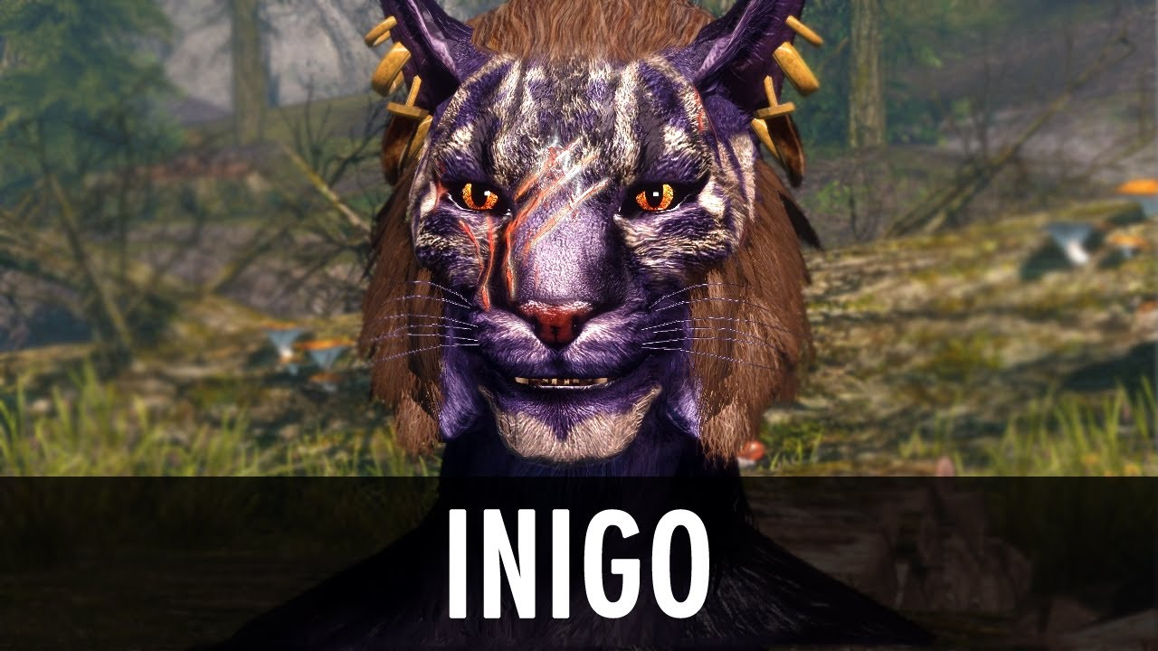 Skyrim Mod: Inigo - Fully Voiced Khajiit Follower - YouTube