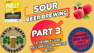 Philly Sour Yeast Info & Souring Method - Sour Beer Brewing Part 3 RaspBerry Sour 4K HD
