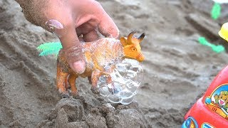 Animals Toys Wash Bath Bubble in Sand | Animals Videos for Kids Learning