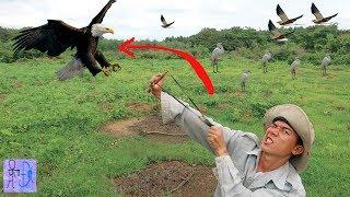Cao Thủ Bắn Chim Như MA QUỶ NHẬP HỒN .Săn Bắn Chim Bằng Chạng Ná Thun . Bird Hunting With Slingshot