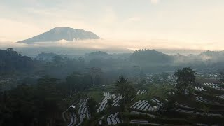 Download Lagu Rich Brian - BALI ft. Guapdad 4000 Indonesia Edition MP3