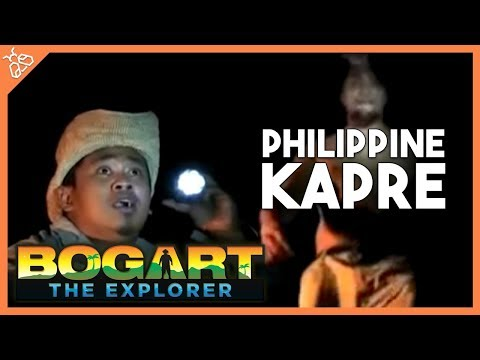 Bogart the Explorer - The Philippine Kapre