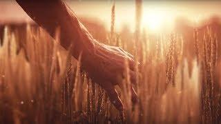 NEW AGCO IDEAL 9T - Comandi Cabina | Agriharvest