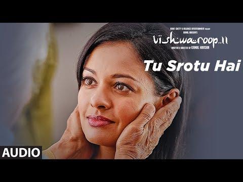 Tu Srotu Hai Full Audio Song | VISHWAROOP 2 | Kamal Haasan, Rahul Bose