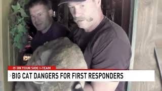 ABC 7 News DC Big Cat Public Safety Act 720 1