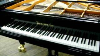 Quick demo - Bosendorfer 280 concert grand with an Ipad player system installed