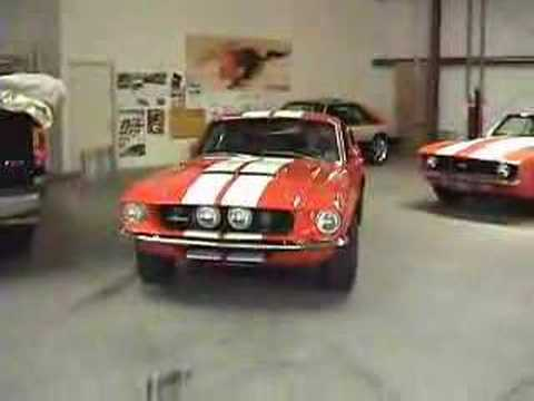 1967 Shelby GT500 Burnout Video