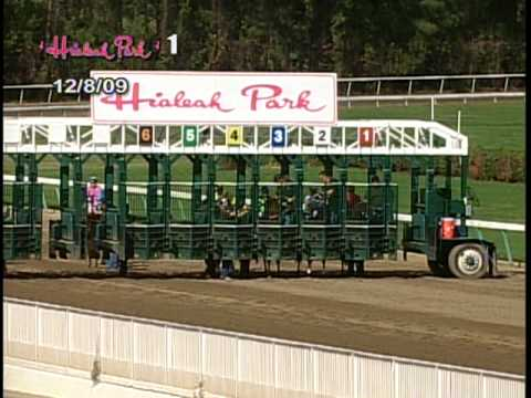 Hialeah Park Racing - SUPERBOWL ANTE