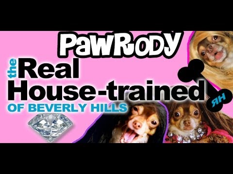 Pawrody: The Real Housewives of Beverly Hills - SPOOF - Doggy Style