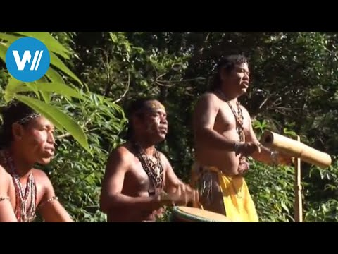 St. Vincent & Dominica (travel-documentary from the season