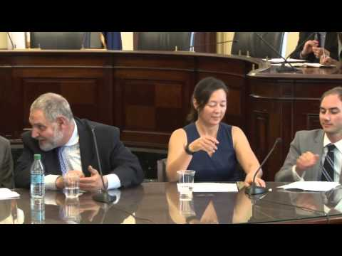 Expo 2015: Policy Forum Panel 4: Renewables (Geothermal, Solar, Wind...)