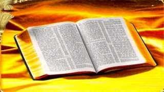 Tremenda Visión ¡¡Alerta a la iglesia que se congrega en el nombre de Jesús!!