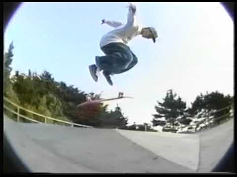 The REAL Video '93 : Kelly Bird