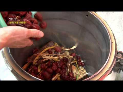 숨겨진 보물 식용곤충
