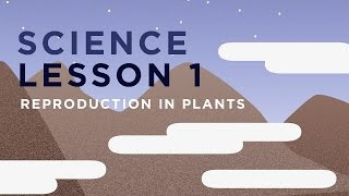 Science Lesson 1: Reproduction in plants