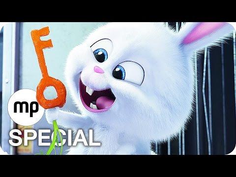 The Secret Life Of Pets - Official Teaser Trailer #1 (2016