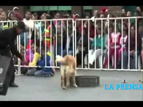 Festeja Reynosa 104 Aniversario de la Revolución