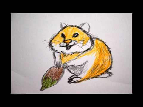 Hamster zeichnen Tiere malen - to draw a hamster