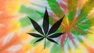 Marijuana Now Legal