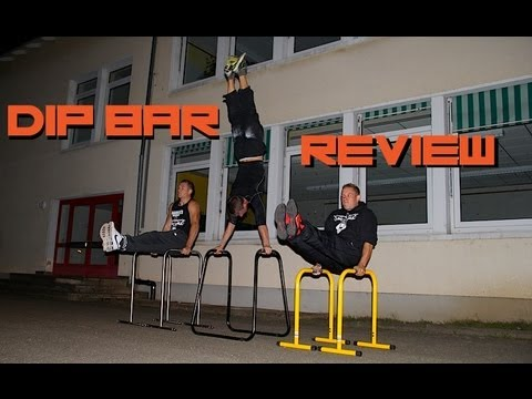 Portable Dip Bar Review (Lebert Equalizer and similar)