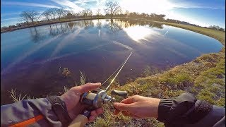 NOT What I Expected! -- Freezing Cold Pond Hopping