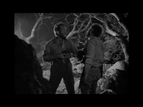 #19 Sierra Madres Skatt - Hans Wiklund för LOVEFiLM