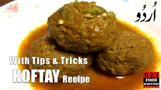 Perfect Kofta Curry By Food Scientist  فرفیکٹ کوفتہ ریسیپی