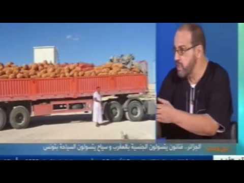 الجزائر : فنانون يتسولون الجنسية المغربية  بالمغرب وسياح يتسولون السياحة بتونس thumbnail