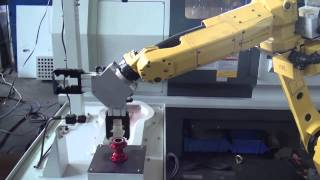 YDPM  MV 1100 + ML 560S + Fanuc Robot + Vision System