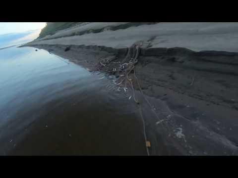 Завершение рыбалки на ряпушку.