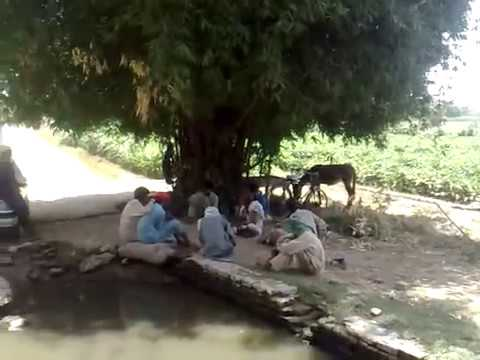 Beautiful Pakistan Punjab Village Life