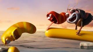 LARVA - THE BIG SWIM | Cartoon Movie | Cartoons For Children | Larva Cartoon | LARVA Official