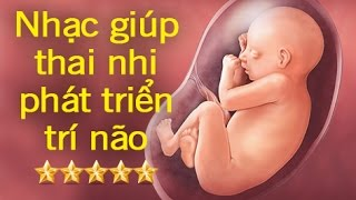 Bản nhạc hay nhất cho thai nhi nghe để phát triển trí não toàn diện - Phần 2 [GiupMe.com]