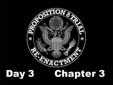 Prop 8 Trial Re-enactment, Day 3 Chapter 3