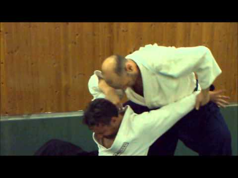 Ogawa Ryu - Aikijujutsu January Italy - Training moments Image 1