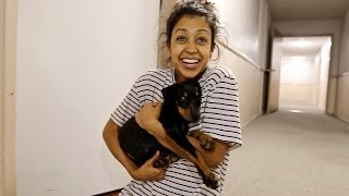 SURPRISING GIRLFRIEND WITH A PUPPY!!