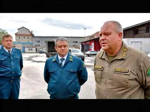 Десна-ТВ: День за Днем от 25.08.2016
