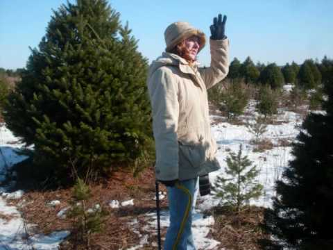 Pictures of My Family and I Cutting Down Our Christmas Tree!!