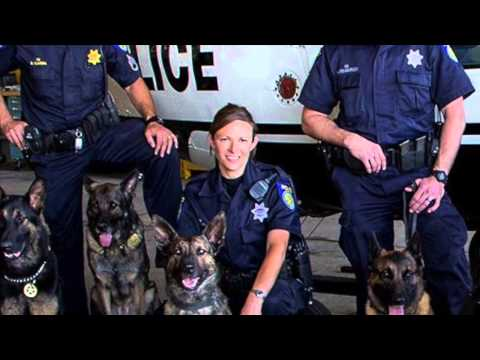 PORAC Salutes Women in Law Enforcement: Sacramento PD K9 Officer Linda Matthew